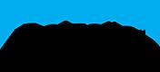 Boizelle Insurance Partnership Logo